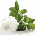 Foto-stevia-a-cukor