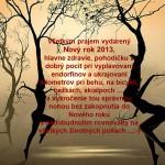 Novy Rok 2013-3