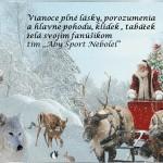 Vianoce 2013-definit
