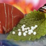 homeopatia-2