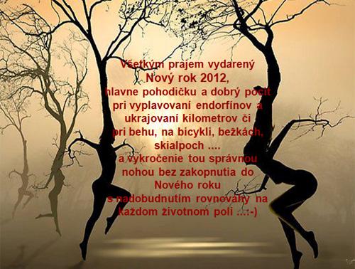 Nový rok 2012